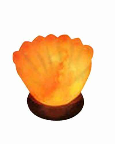 seal shell salt lamps real himalayan salt