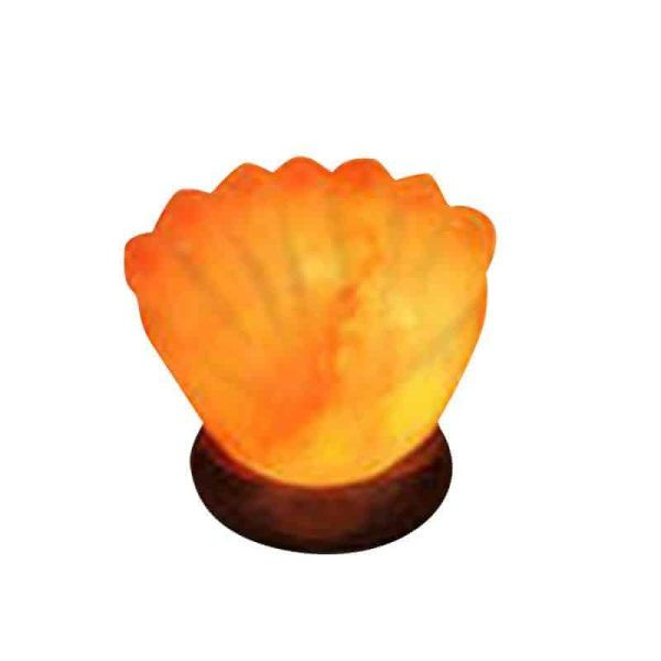 Sea Shell Himalayan Salt Light – Hand Carved