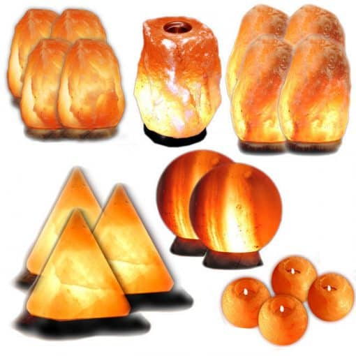 executive himalayan wholesale starter set 19 items
