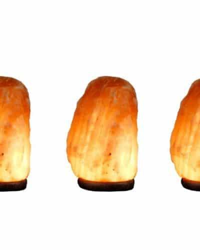 xl large salt valiue pack himalayan