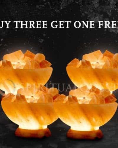 Buy 3 Abundance Bowls, Get 1 Free!