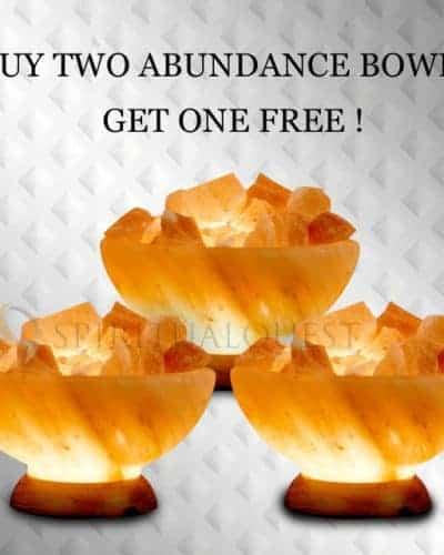 Value Pack - Buy 2 Abundance Bowls, Get 1 Free!