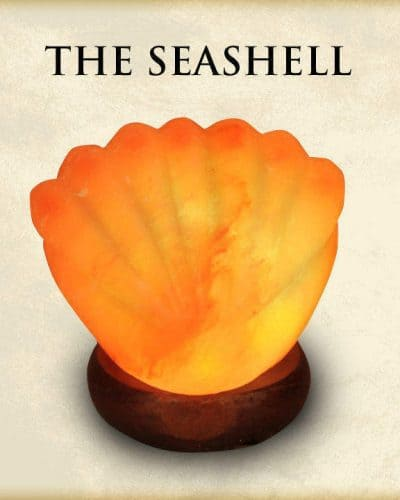 Sea Shell Salt Light (himalayan Salt sea shell) 4 - 5 lbs