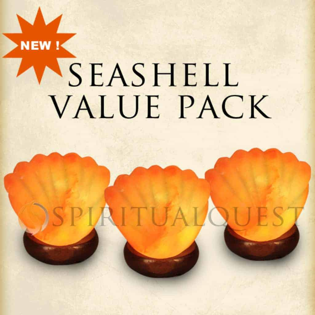 3x Sea Shell Salt Lamp Package Deal  All New