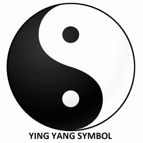 Ying Yang Meditation Symbol