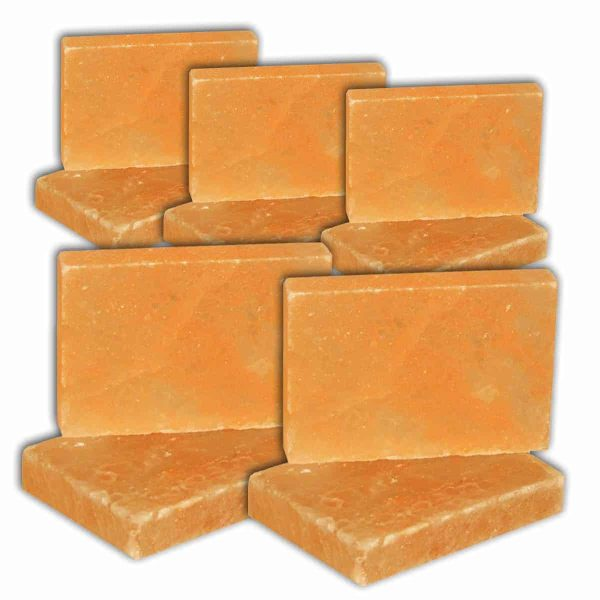 4x6x1 brick QTY 10