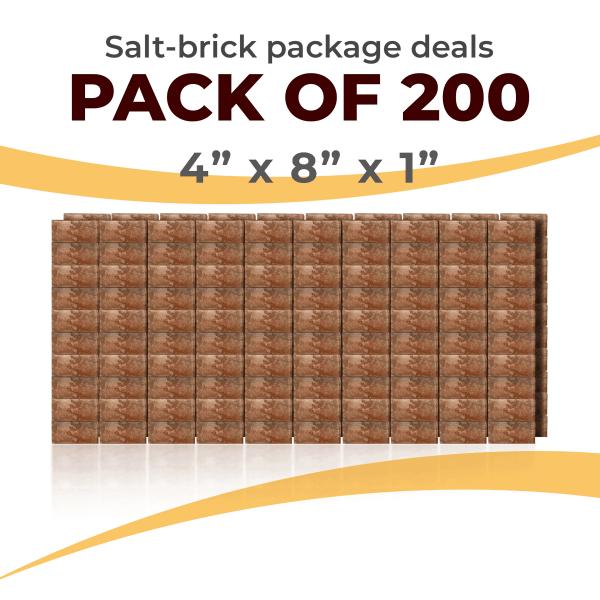 200 Salt Wall Bricks 4x8x1 Rough Face