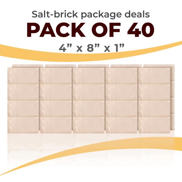 40 Salt Wall Bricks 4x8x1 White