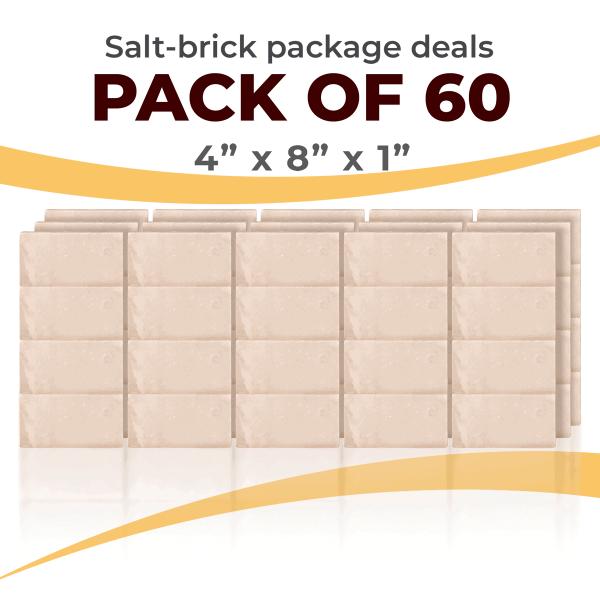 60 Salt Wall Bricks 4x8x1 White