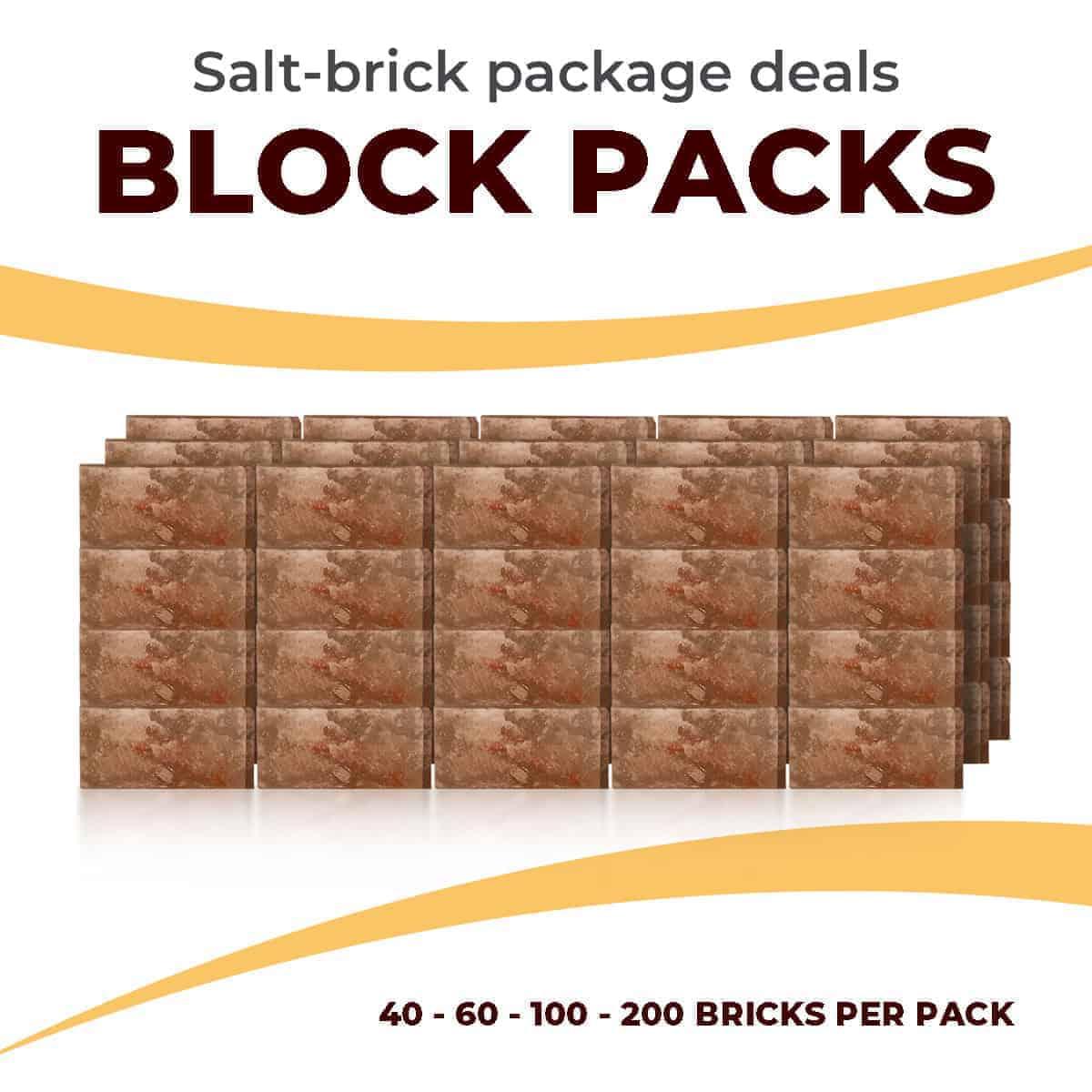 Salt Wall Brick Kits