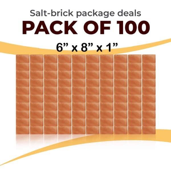 100 6x8x1 Bricks