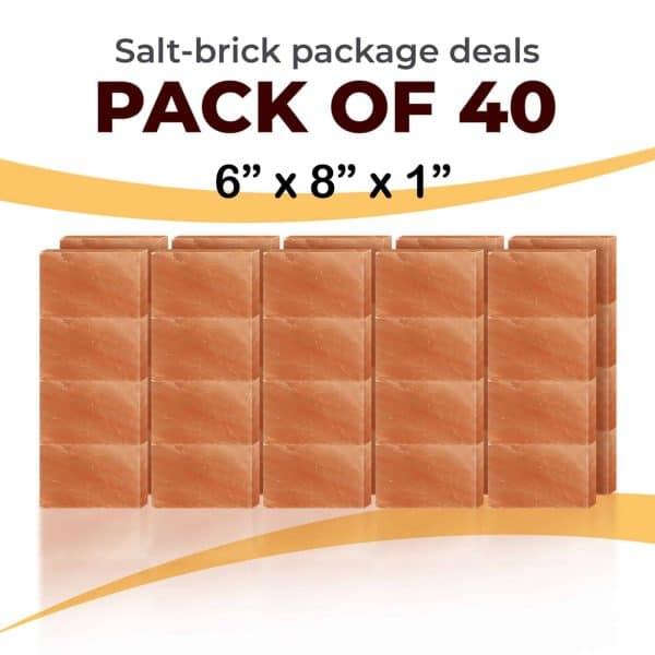40 6x8x1 Bricks