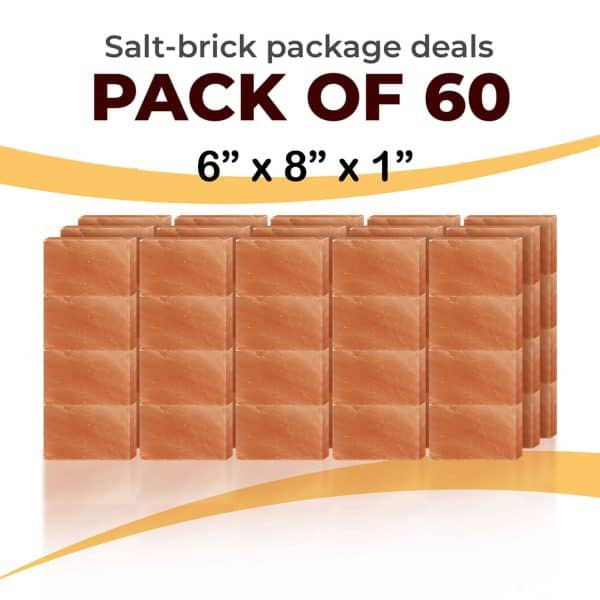 60 6x8x1 Bricks