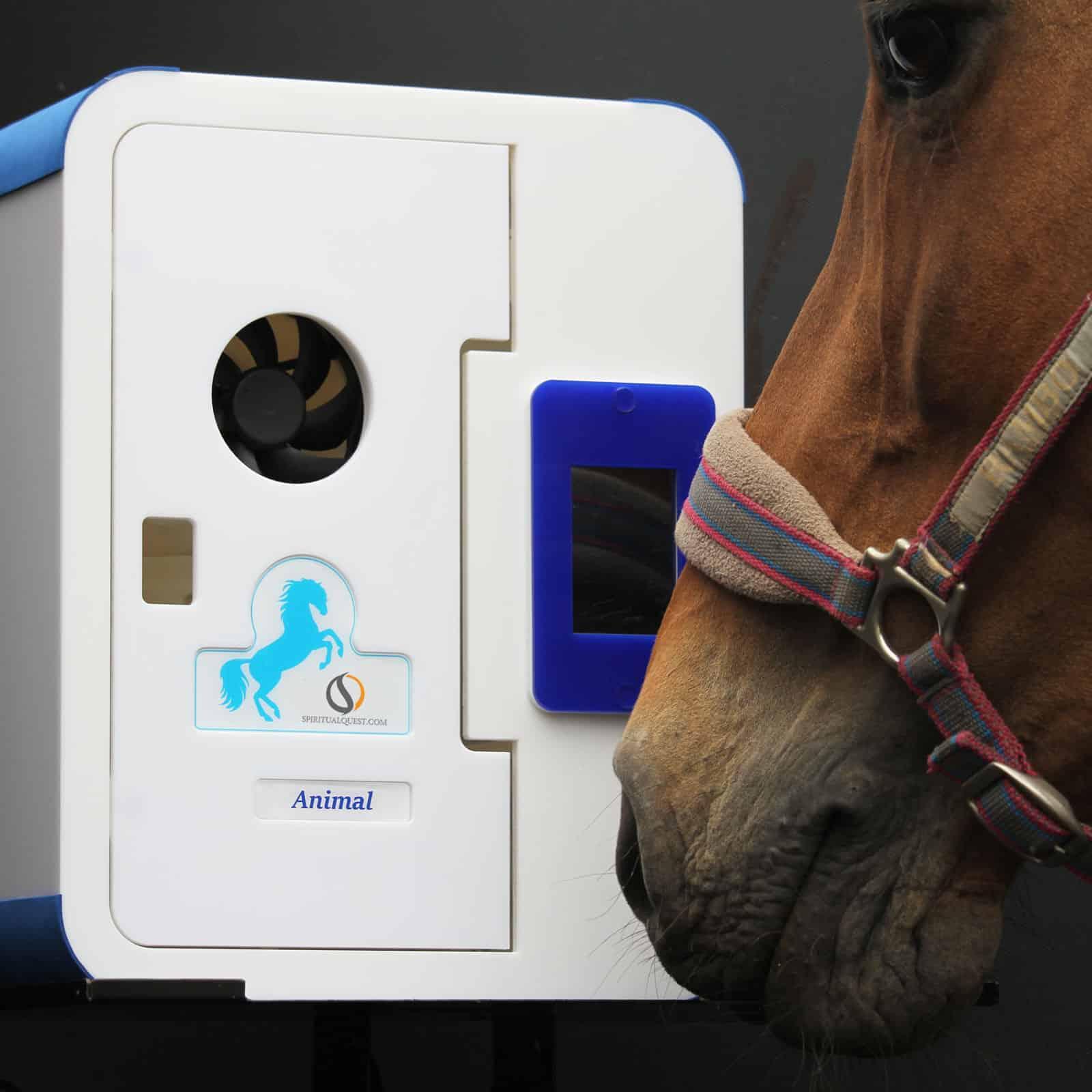 Equine HaloTherapy Generator